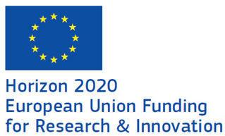 logo Horizon 2020 European union